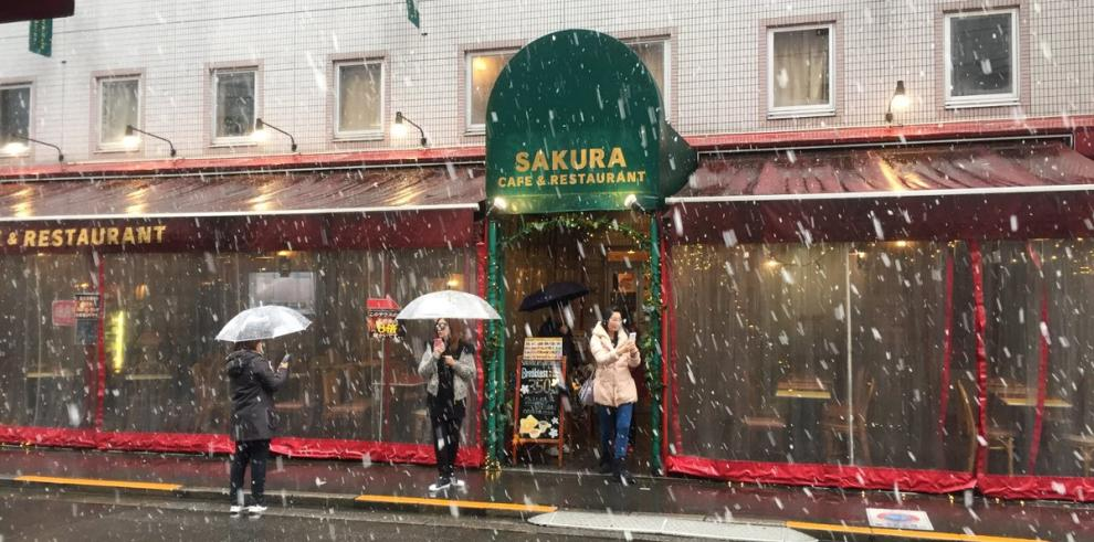 Cae nieve en Tokio después de 54 años