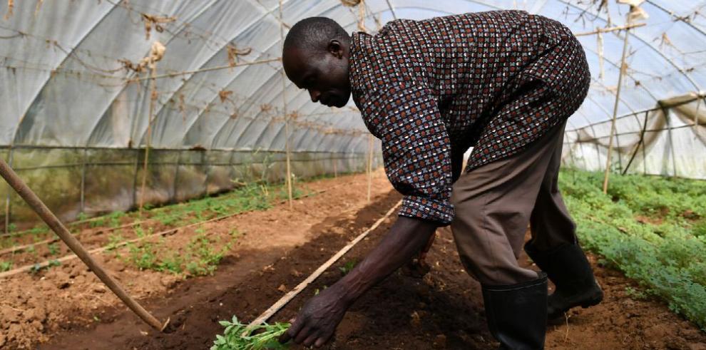 La economía africana alcanza bajón histórico