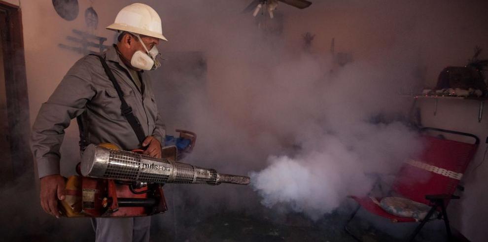 """El zika se propaga de manera """"explosiva"""", según la OMS"""