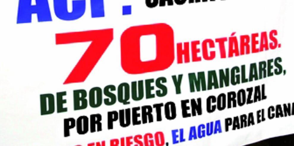 Puerto de Corozal, una inversión que genera polémica
