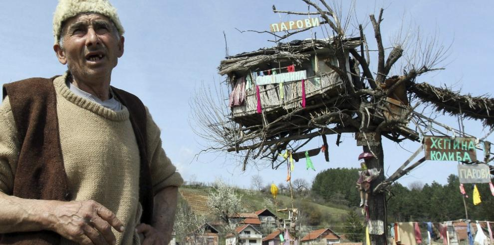 Serbio decide vivir en una casa-árbol con un jabalí, gatos y pollos