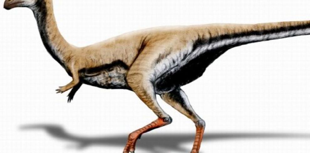 Limusaurus, un raro dinosaurio