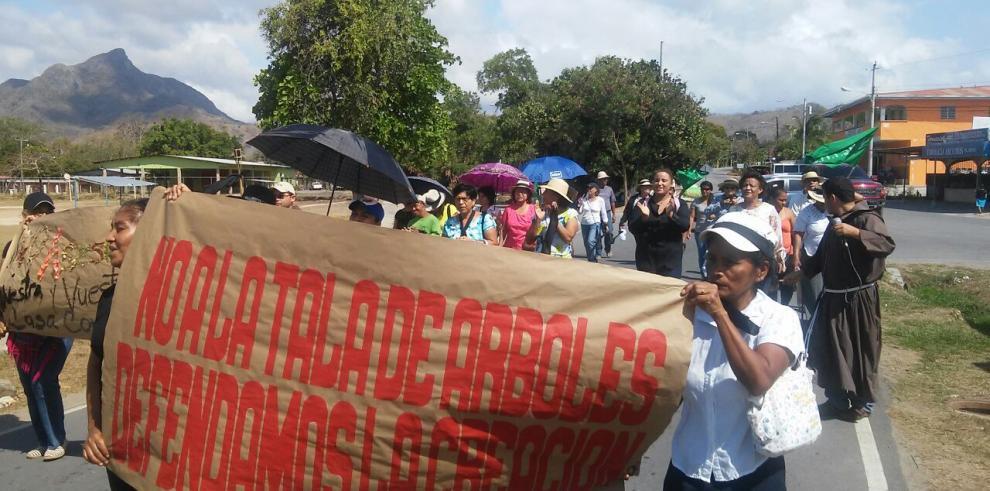 En La Pintada protestan contra la tala