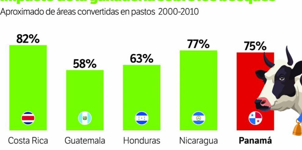 Ganadería causa daños ambientales en Centroamérica