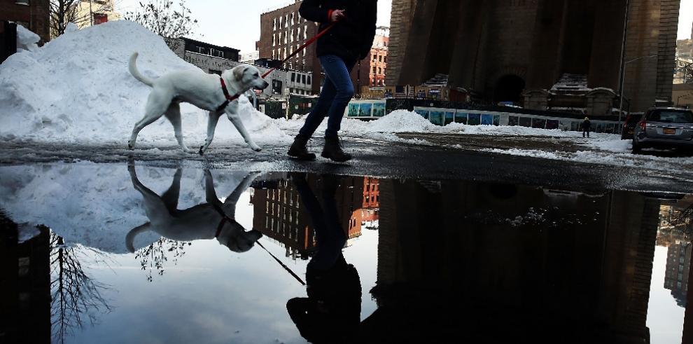 Washington sigue bloqueada luego de nevada histórica