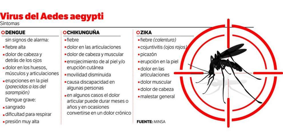 Treinta y un años de lucha contra el mosquito Aedes aegypti