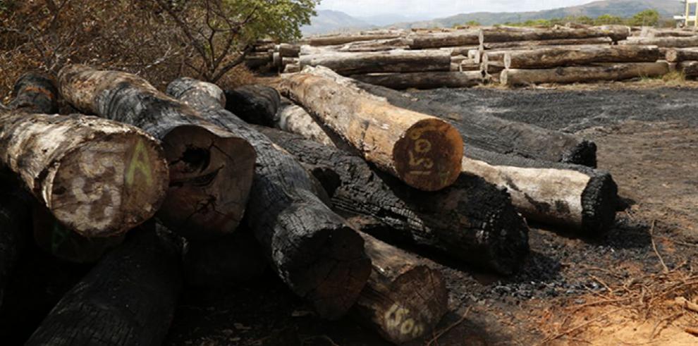 Investigan quema de madera retenida