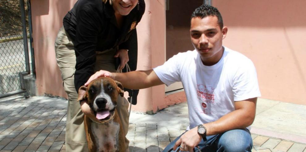 Multan con mil dólares a dueño de perro, acusado de maltrato animal