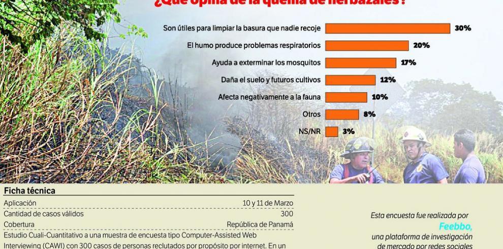 Datos para pensar: algunos apuntes sobre la quema de herbazales