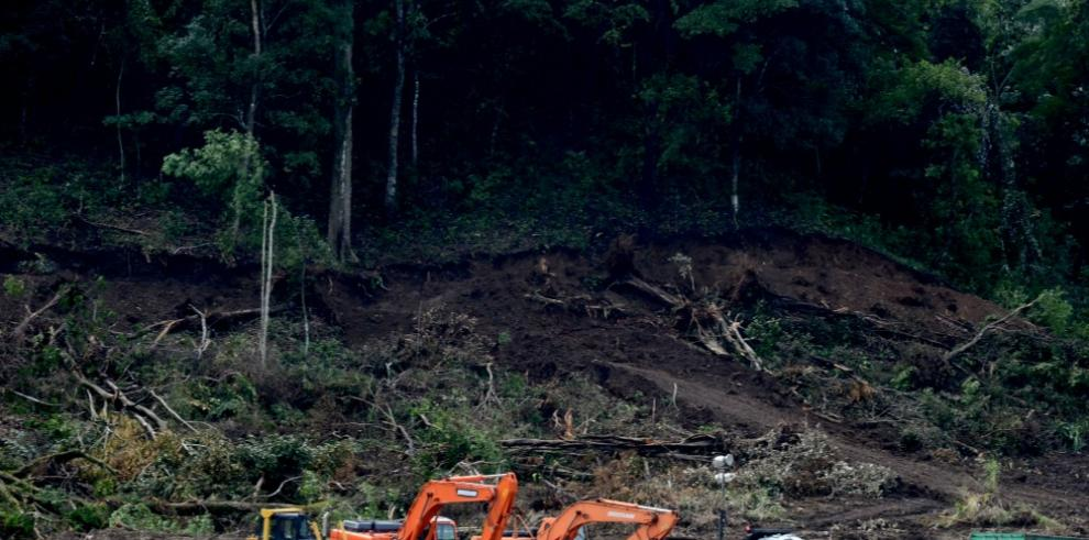 Panamá descuida la casa en su lucha contra el cambio climático