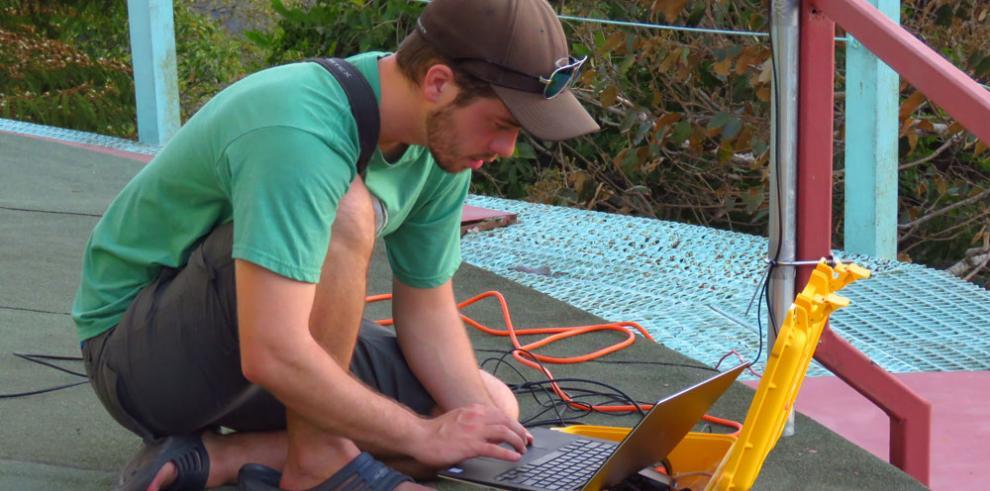 Panamá instala sistema para detectar paso migratorio de aves