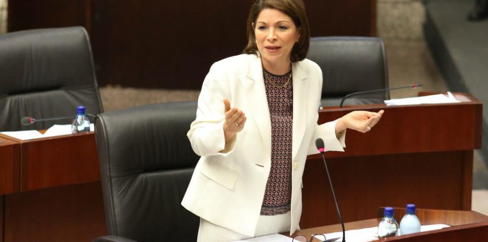 Gómez admitió que se debió trabajar en discusiones de anteproyectos