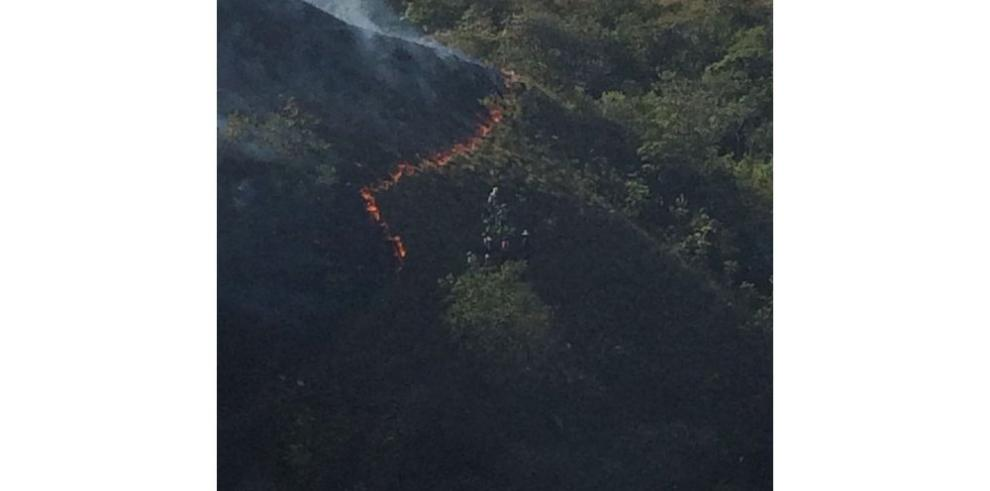 Bomberos, en alerta por incendios en áreas forestales