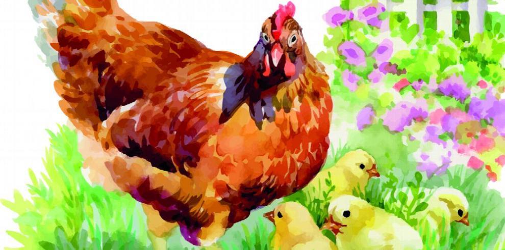 La producción avícola es autosuficiente