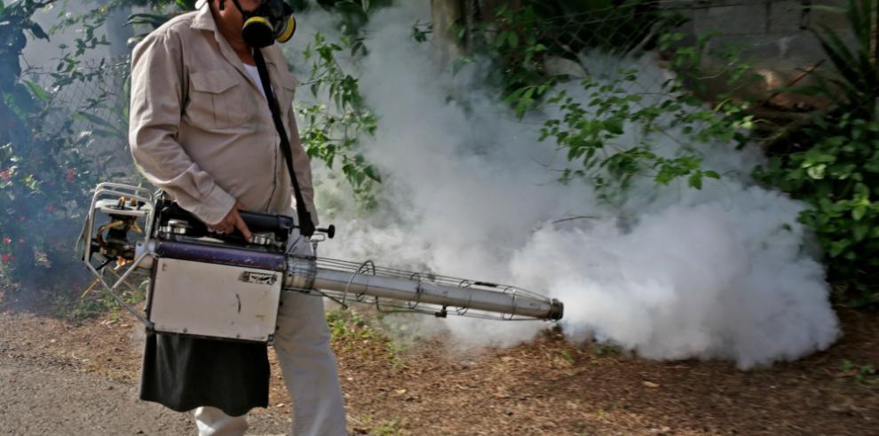 Salud confirma 100 casos de dengue en la región metropolitana