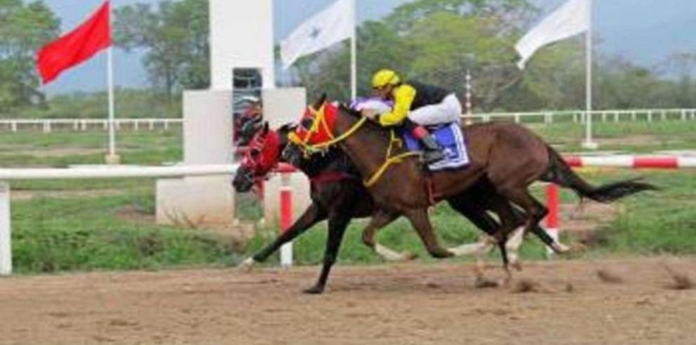 Reorganizarán en abril la hípica colombiana