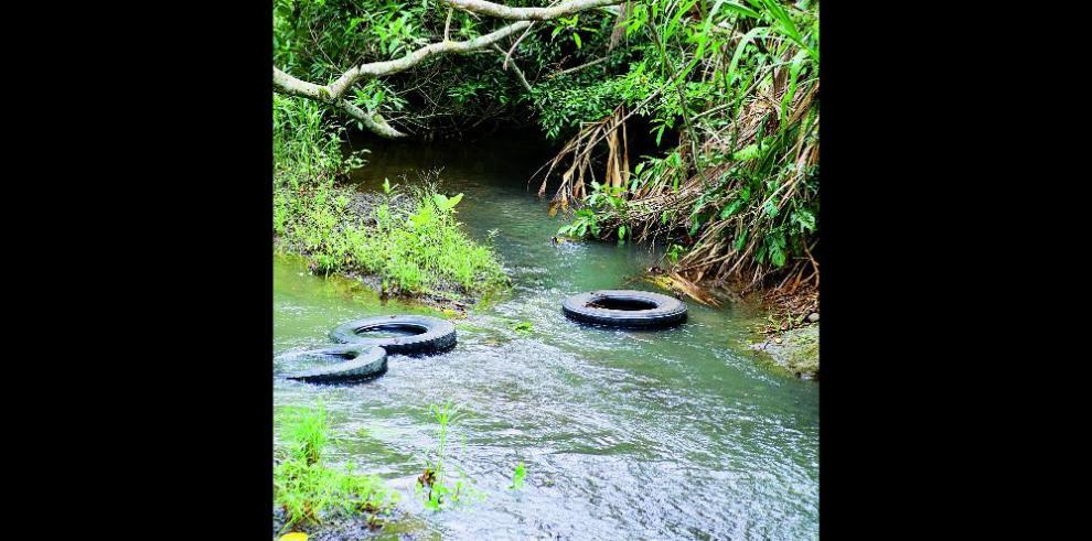 Acuerdan establecer cuenca hídrica