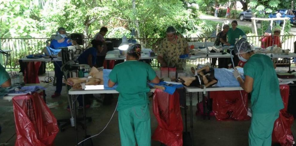 Realizan jornada de esterilización de mascotas en Tocumen