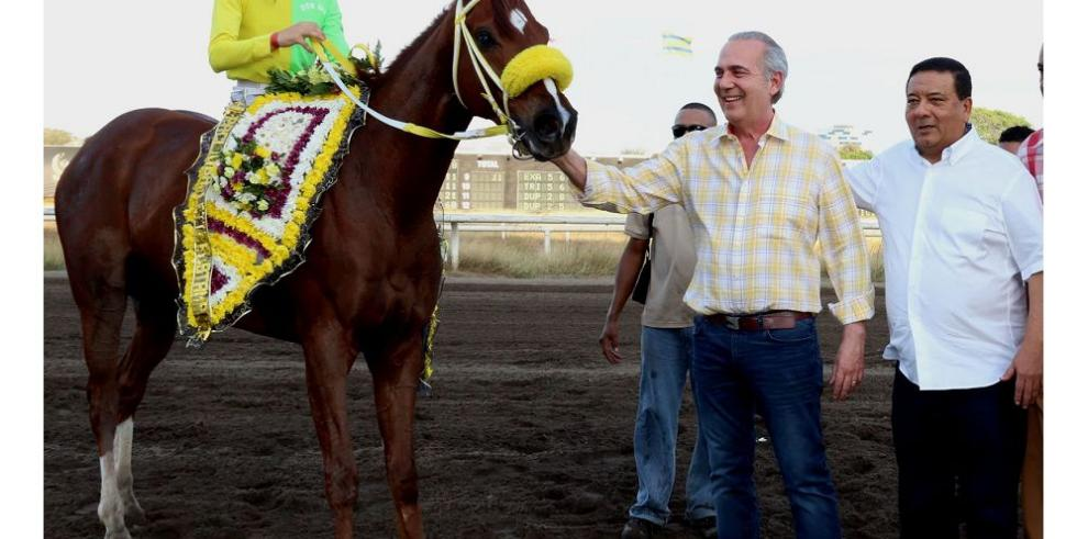 Jap Horse Stall, líder entre los propietarios