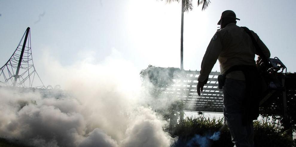 """Guerra contra el """"Aedes aegypti"""""""