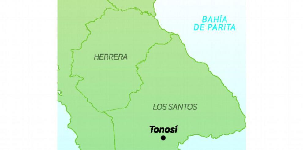 MiAmbiente investiga extraña muerte de delfines en Tonosí