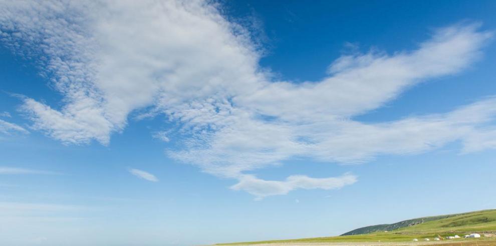 Mejora la población de gacelas en Przewalski, China