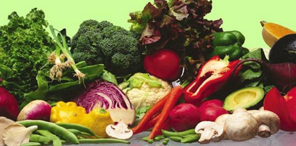 Los precios de los alimentos, en su nivel más bajo en 5 años (FAO)