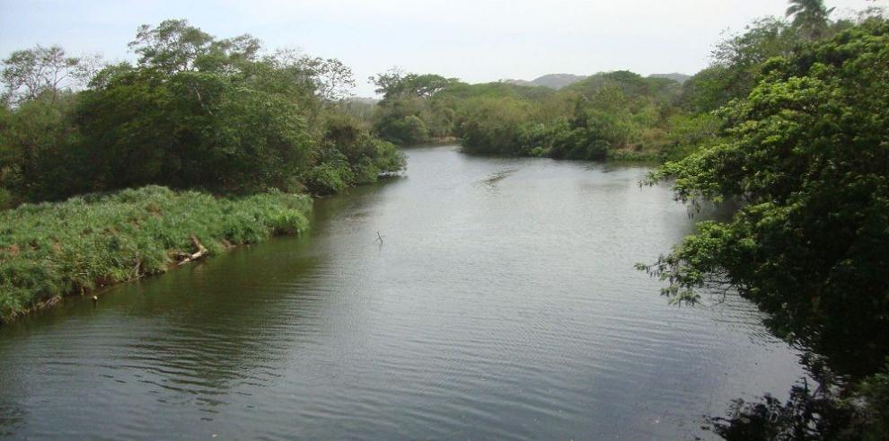 Reforestarán el río La Villa