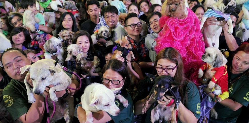 Amantes de los animales aprovecharon para celebrar con ellos su día