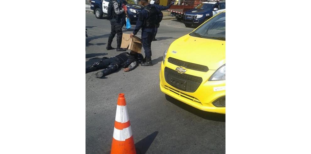 Atropellan a lince de la Policía Nacional