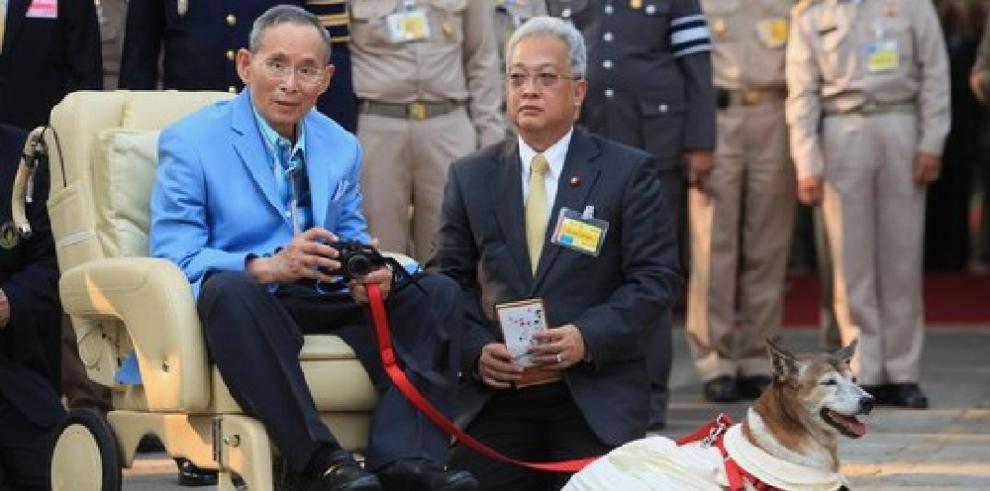 El deceso de la perra del rey acapara las portadas en Tailandia