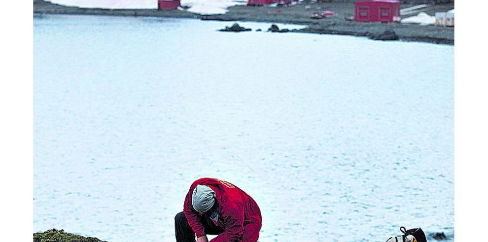Chile construirá su primer muelle en la Antártida