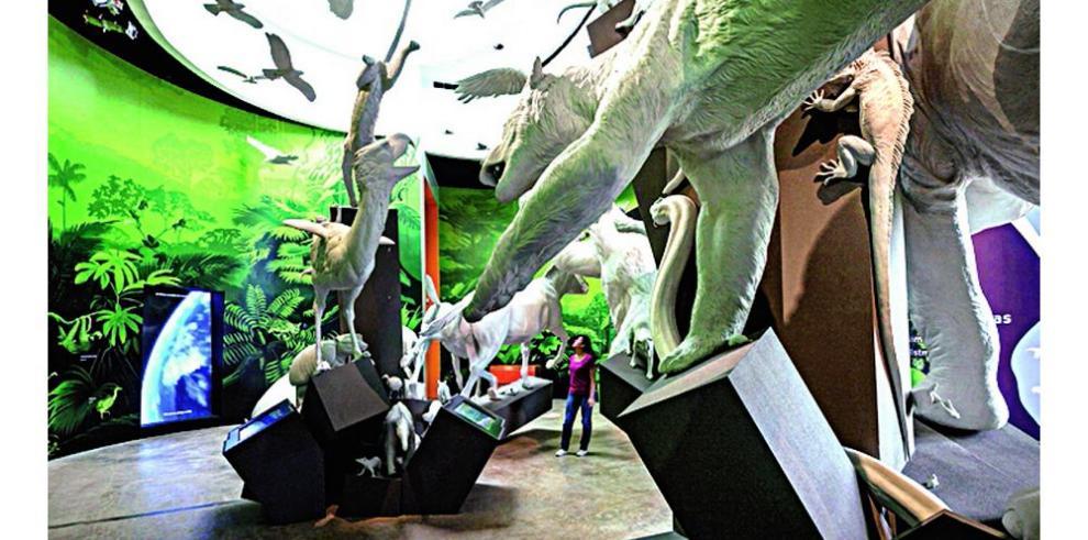 Campamentos en el Biomuseo