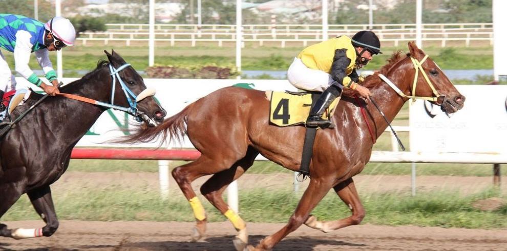 Los equinos veloces destacan en la tanda