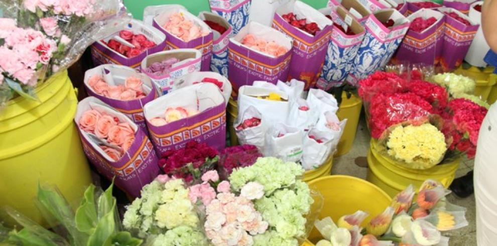 Aduanas: En seis meses se han decomisado 9 toneladas de flores