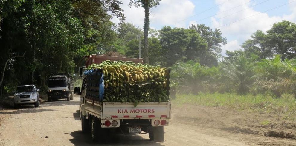 Del Monte compraría tierras en zona del Barú en Chiriquí