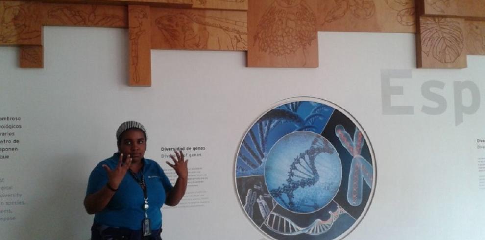 Biomuseo: Una combinación de arte, ciencia y naturaleza