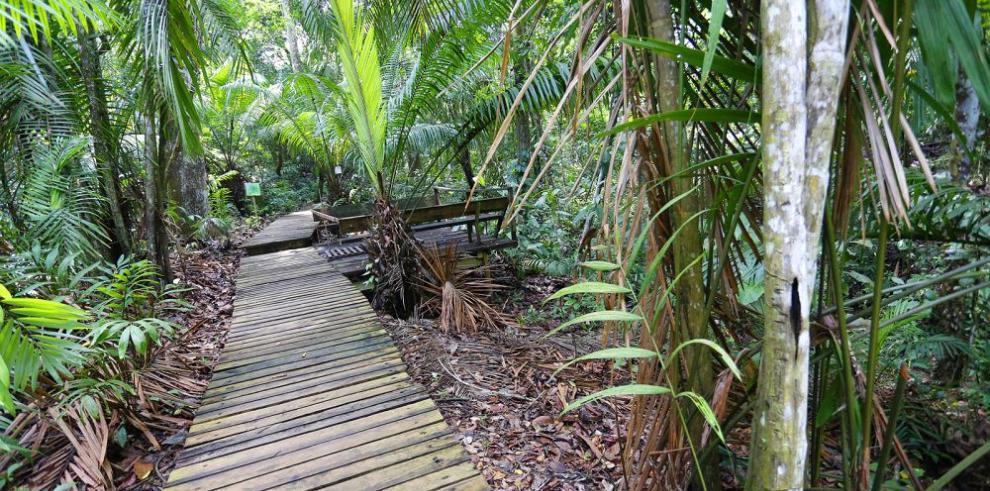 Panamá prepara guías de turismo especializado en áreas protegidas