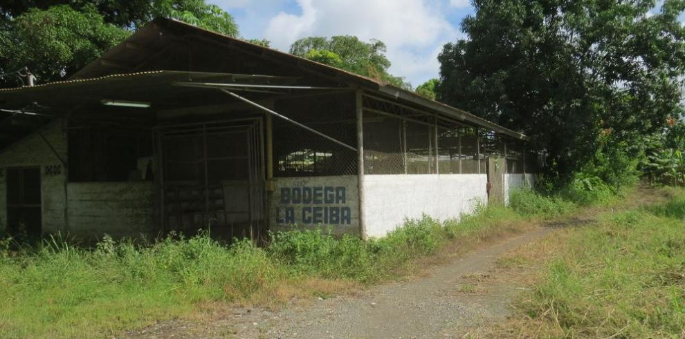 Transnacional, interesada en instalarse en Barú