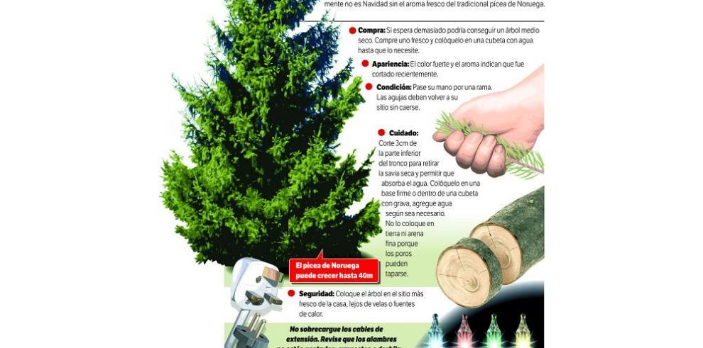 Árbol de Navidad, fuente de esperanza