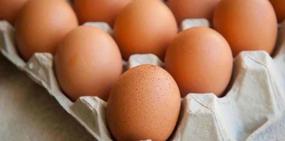 Lanzan campaña del consumo de huevo