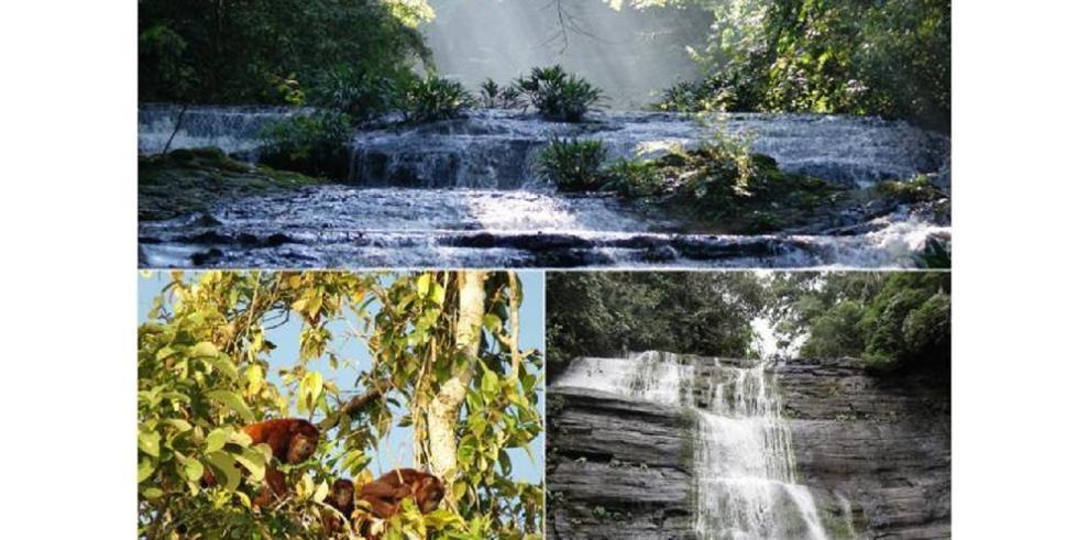 UNESCO confirma que el Parque Natural Los Katíos ya no está en peligro