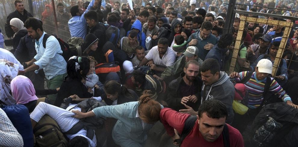 ACNUR pide a millonarios de Italia que donen 15,000 euros para refugiados