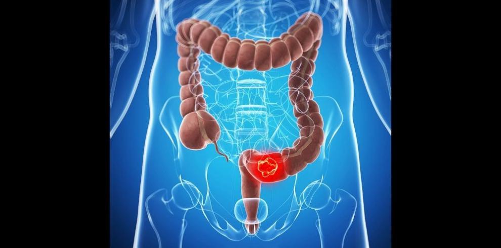 La última punta de nuestro sistema digestivo