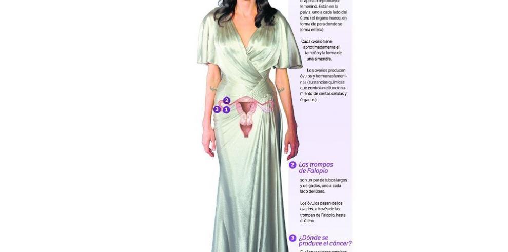 Angelina, entre el cáncer y la pared