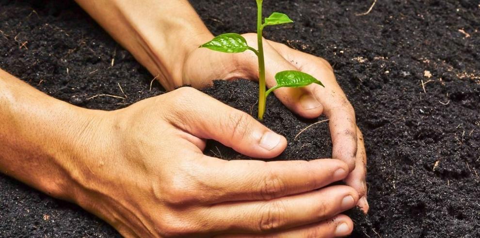 Crece la práctica de la RSE en Colombia