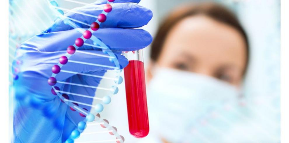 Cuando el ADN indica el camino