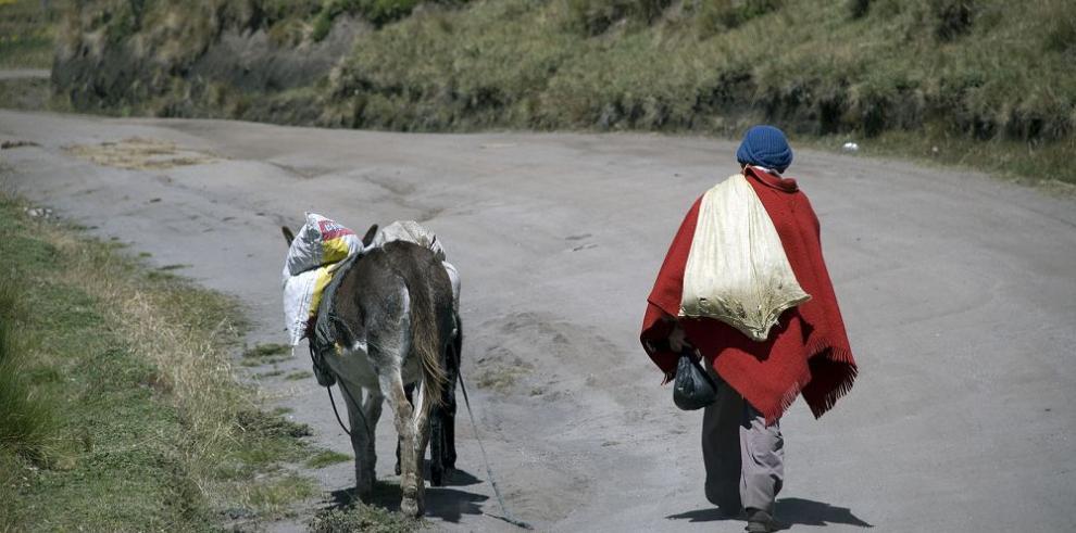 Ofrecen inclusión económica y social a familias rurales de Quito