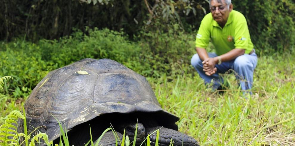 Identifican nueva especie de tortuga gigante en Galápagos
