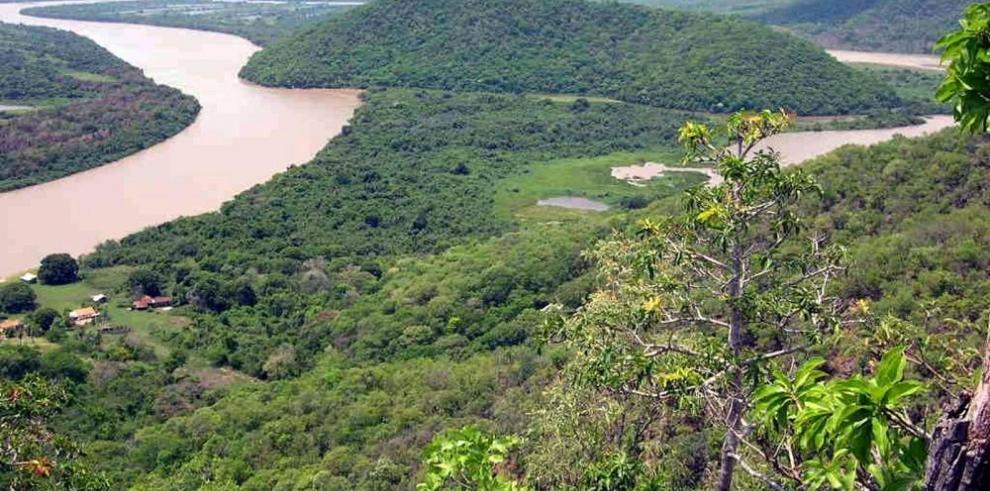 Expertos piden más cooperación para la preservación de la Amazonía